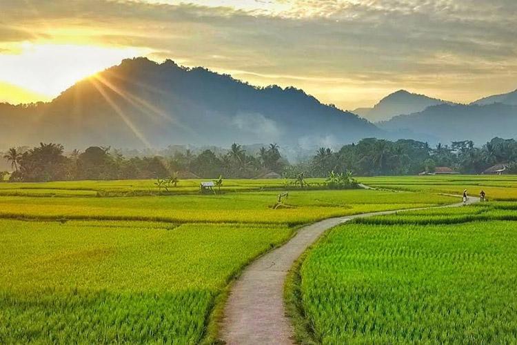 5 Rekomendasi Tempat Wisata di Bogor yang Lagi Populer